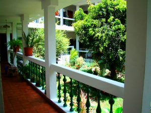apartamentos-otorongo-jardines-1