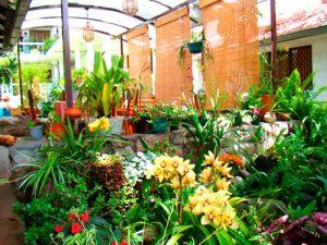 apartamentos-otorongo-jardines-5