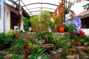 apartamentos-otorongo-jardines-7
